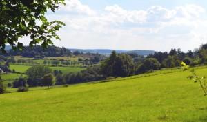 Ausblick vom Landgasthof Gruß